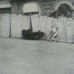 1967 mossa falsa e Topolone con le zampe tra i materassi